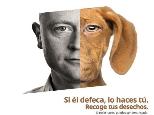 Ayuntamiento de Cadreita – perro