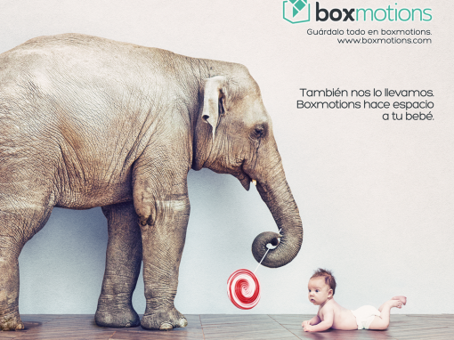 boxmotions1